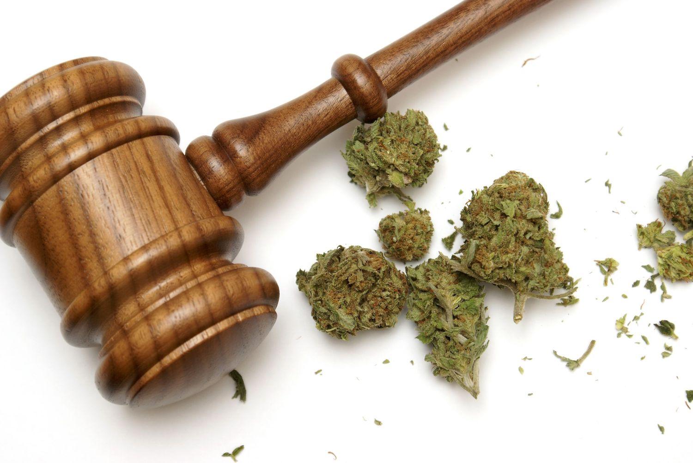 New Marijuana Bill S.420 Introduced